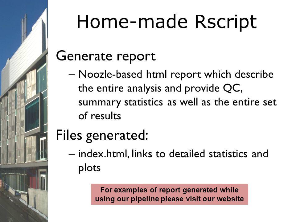 Home-made Rscript Generate report Files generated: