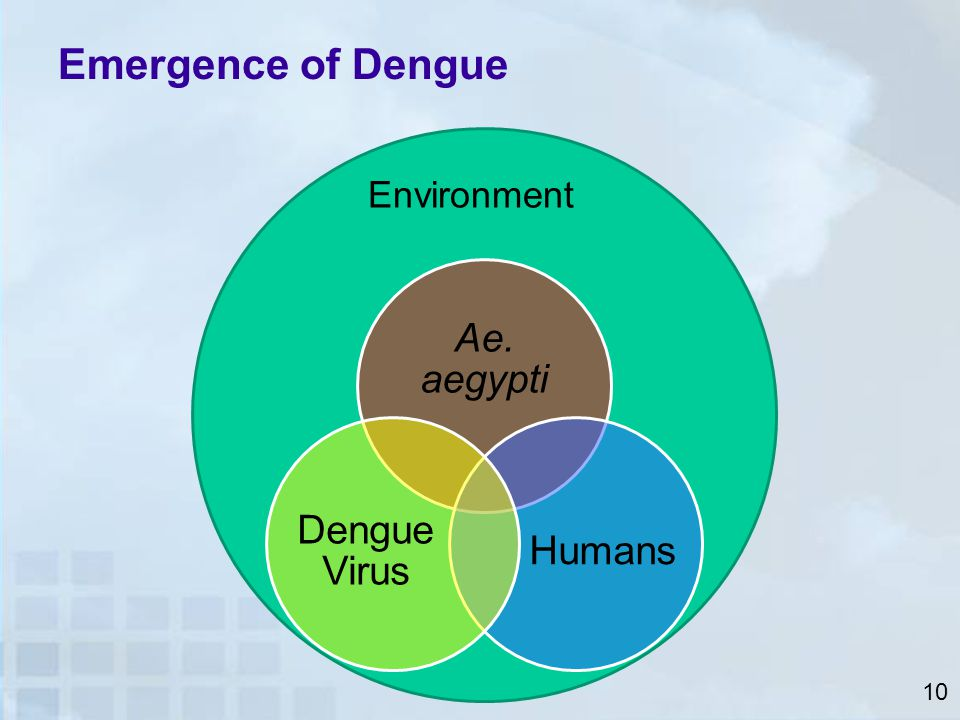 Emergence of Dengue Ae. aegypti Dengue Virus Humans Environment 10