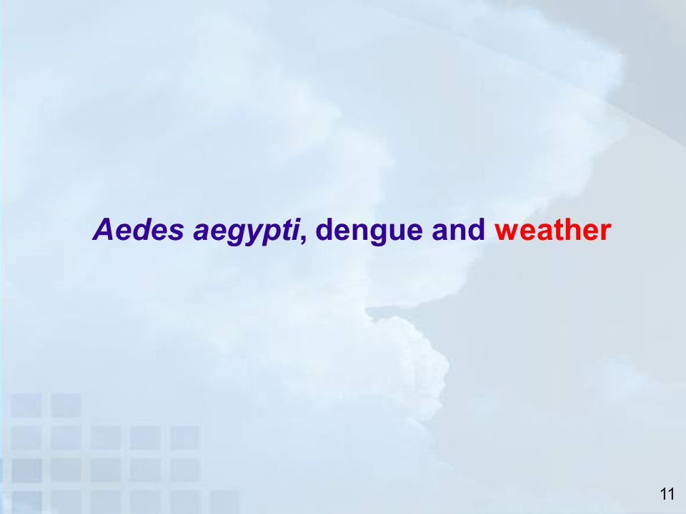 Aedes aegypti, dengue and weather