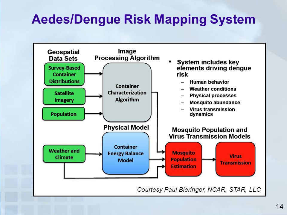 Aedes/Dengue Risk Mapping System