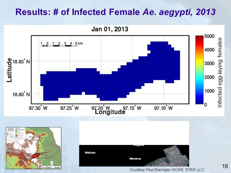 Results: # of Infected Female Ae. aegypti, 2013
