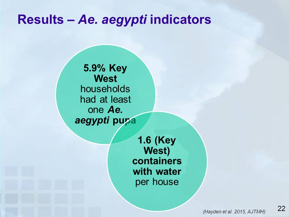 Results – Ae. aegypti indicators