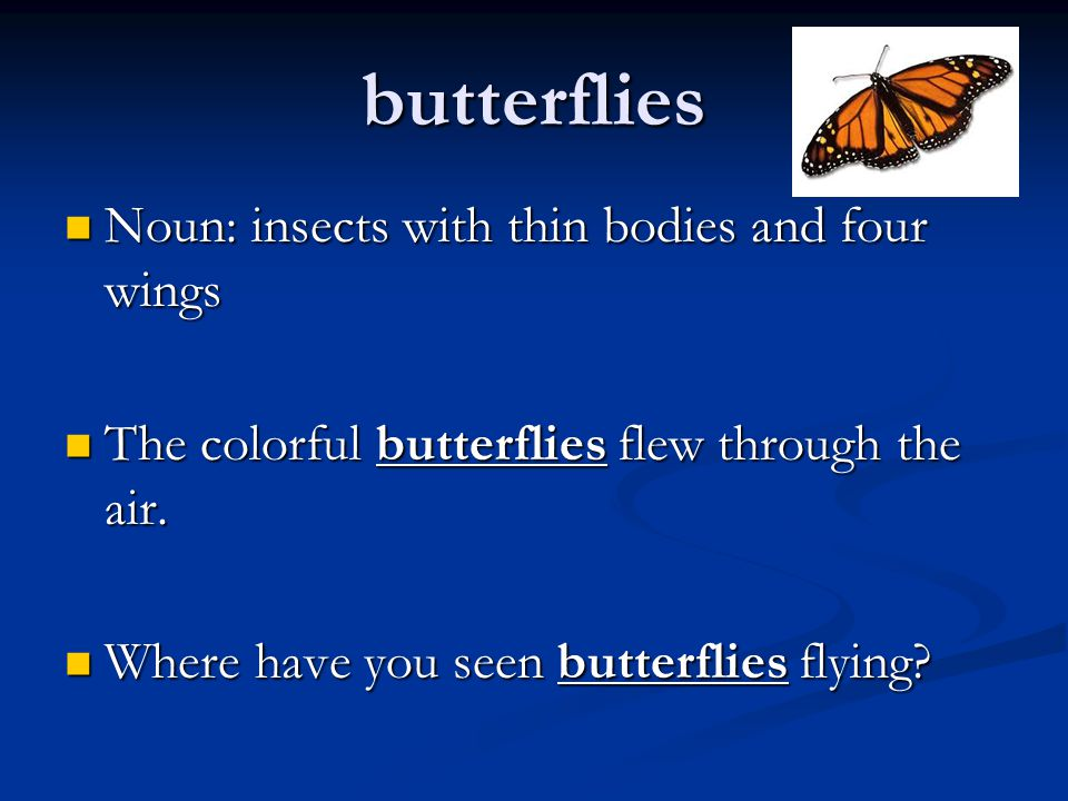 butterflies Noun: insects with thin bodies and four wings