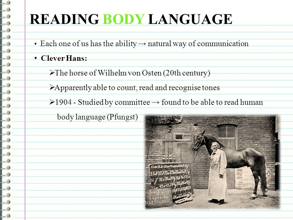 READING BODY LANGUAGE Clever Hans: