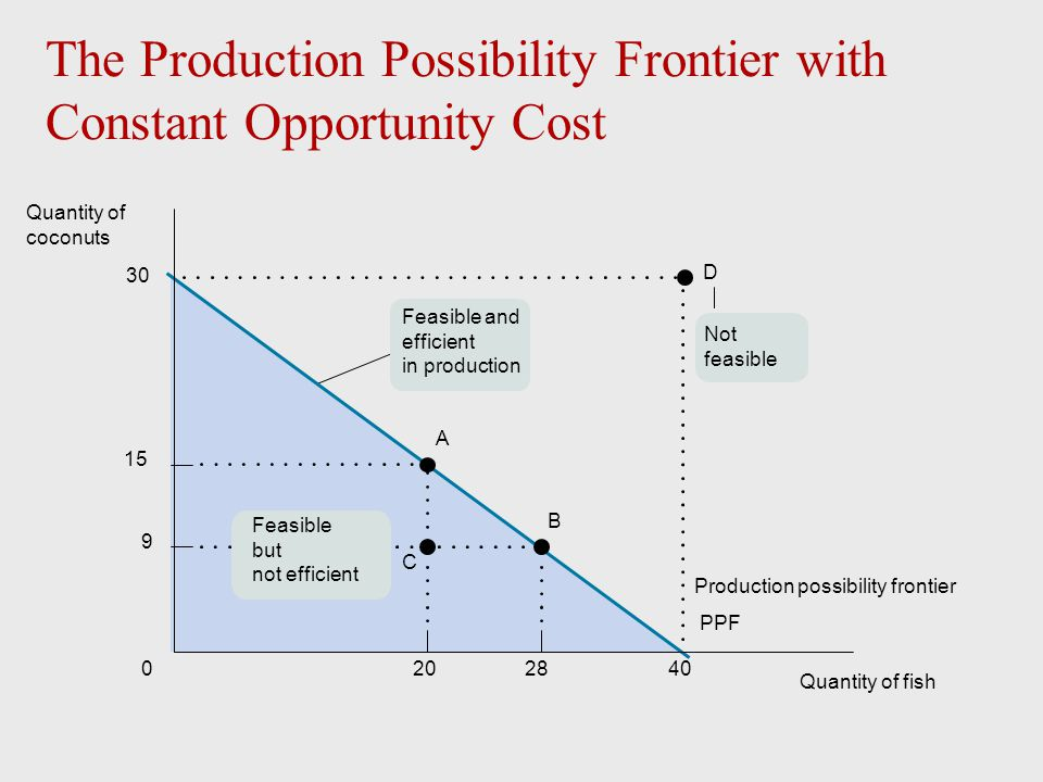 The Production Possibility Frontier with Constant Opportunity Cost