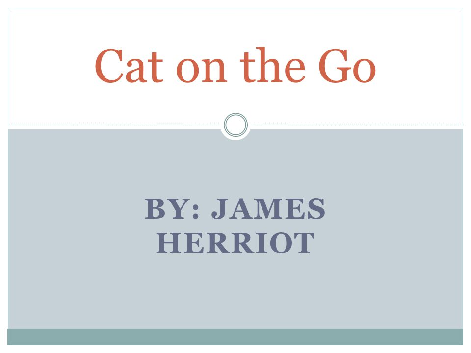 Cat on the Go By: James Herriot