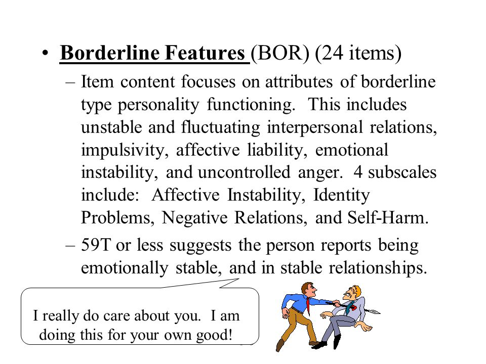 Borderline Features (BOR) (24 items)