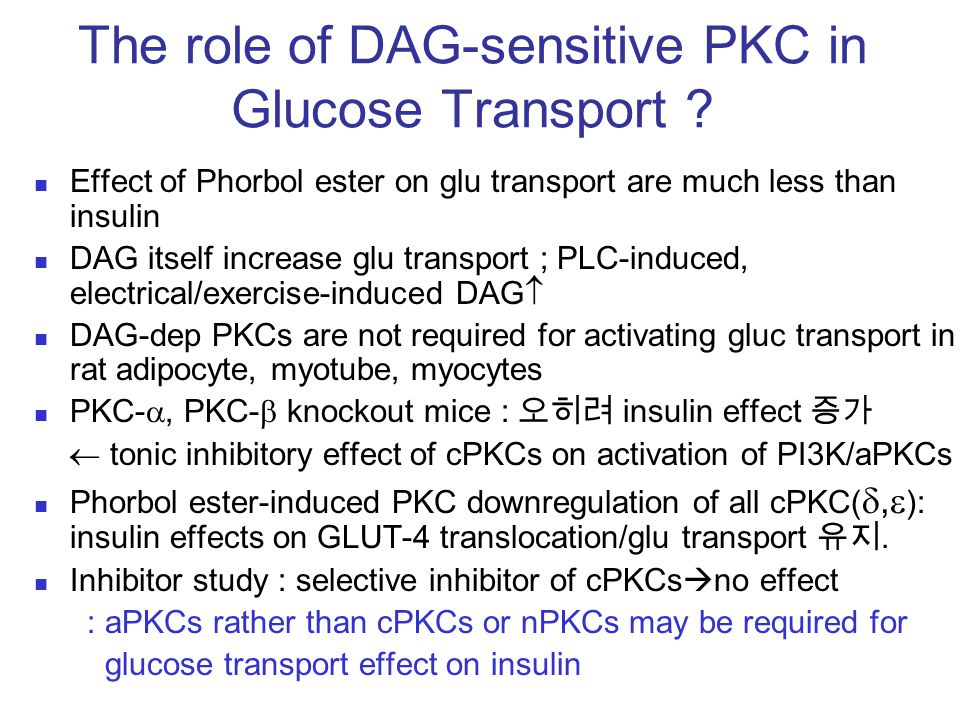 The role of DAG-sensitive PKC in Glucose Transport