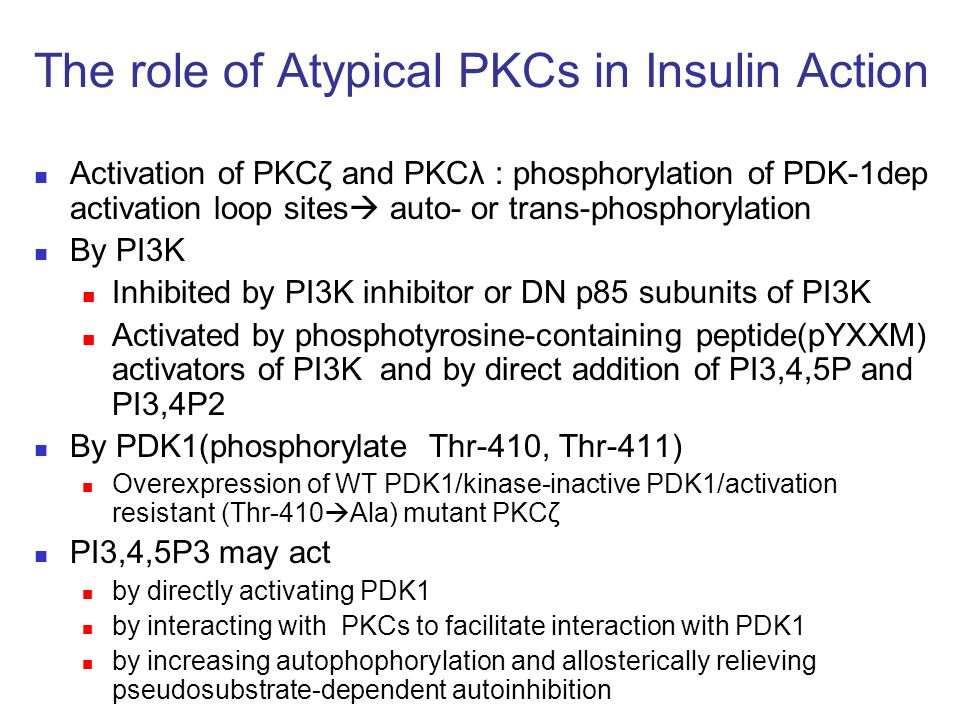 The role of Atypical PKCs in Insulin Action