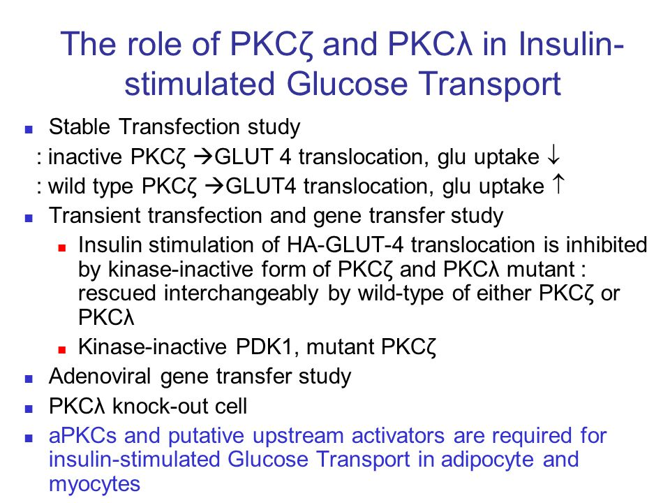 The role of PKCζ and PKCλ in Insulin-stimulated Glucose Transport