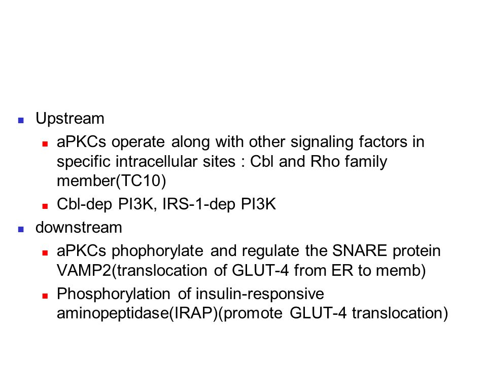 Upstream aPKCs operate along with other signaling factors in specific intracellular sites : Cbl and Rho family member(TC10)