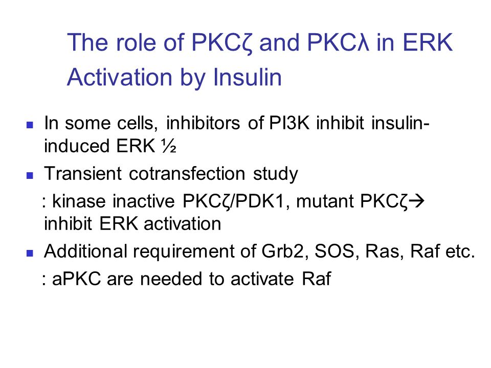 The role of PKCζ and PKCλ in ERK Activation by Insulin