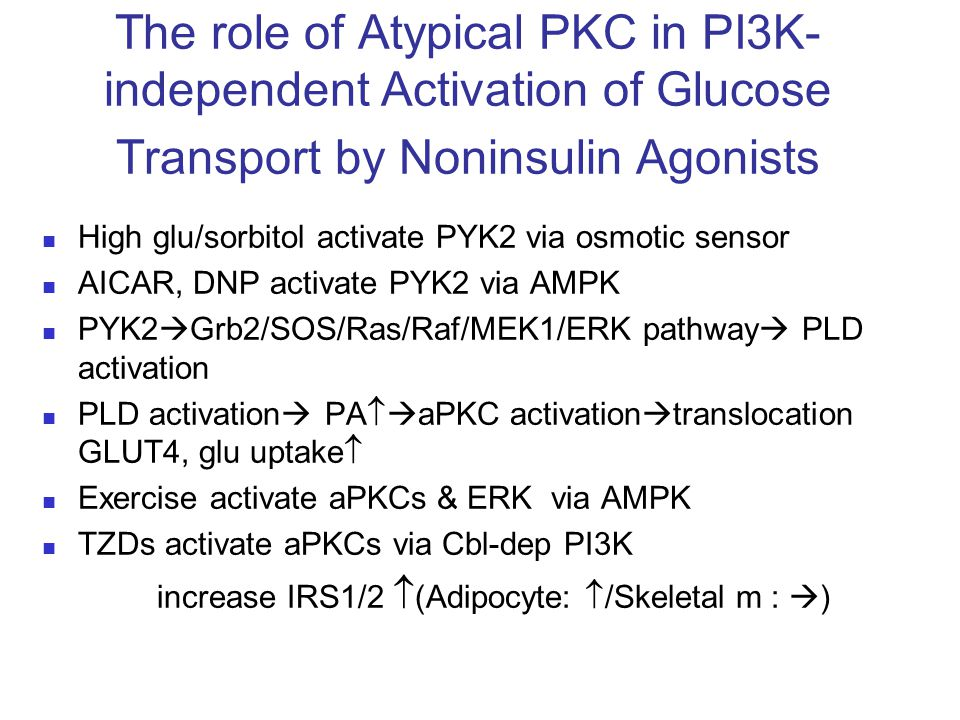 The role of Atypical PKC in PI3K-independent Activation of Glucose Transport by Noninsulin Agonists
