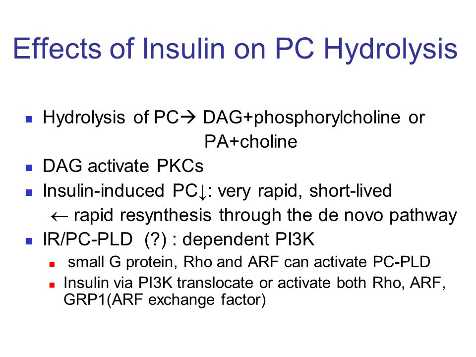 Effects of Insulin on PC Hydrolysis