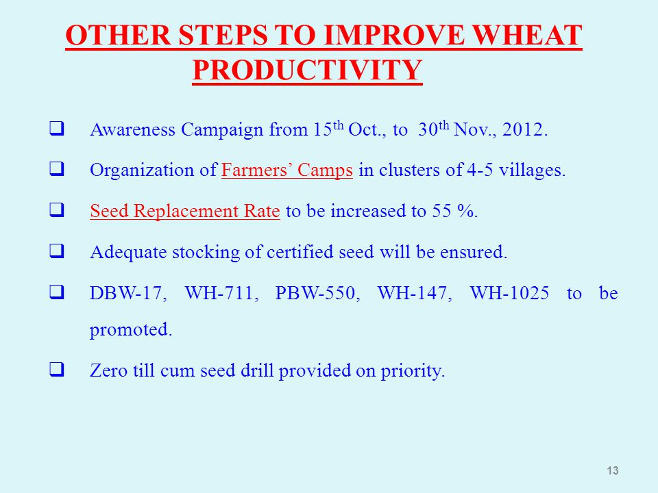 OTHER STEPS TO IMPROVE WHEAT PRODUCTIVITY