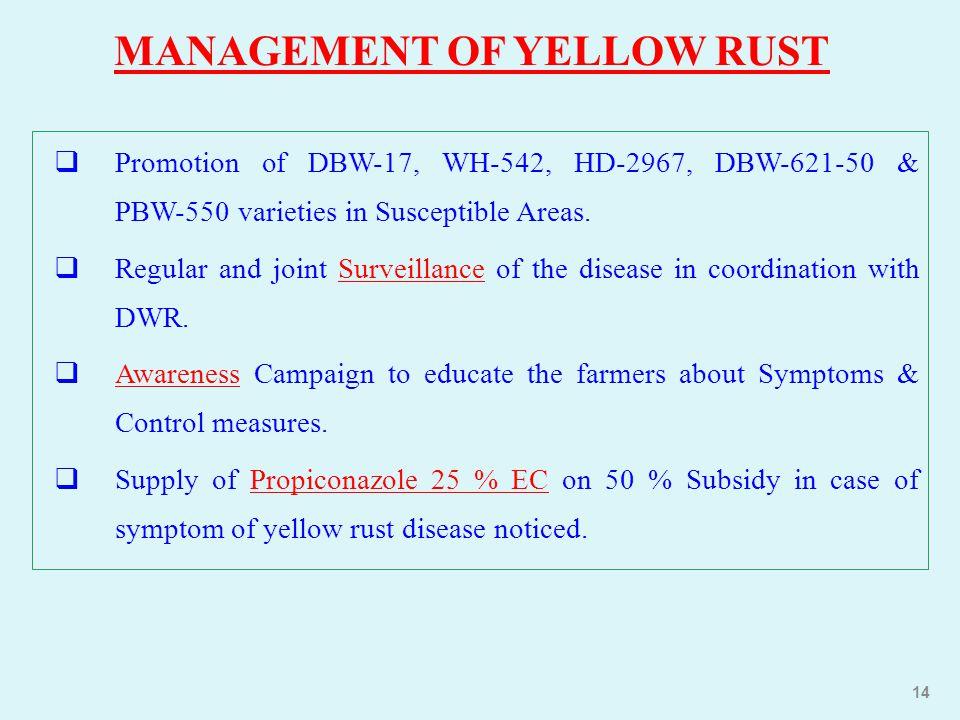 MANAGEMENT OF YELLOW RUST