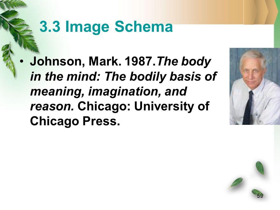 3.3 Image Schema