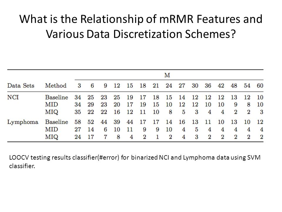 What is the Relationship of mRMR Features and Various Data Discretization Schemes