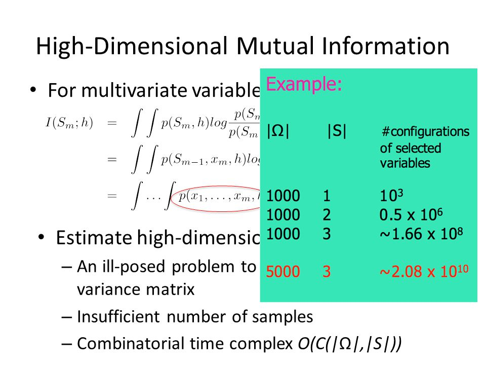 High-Dimensional Mutual Information