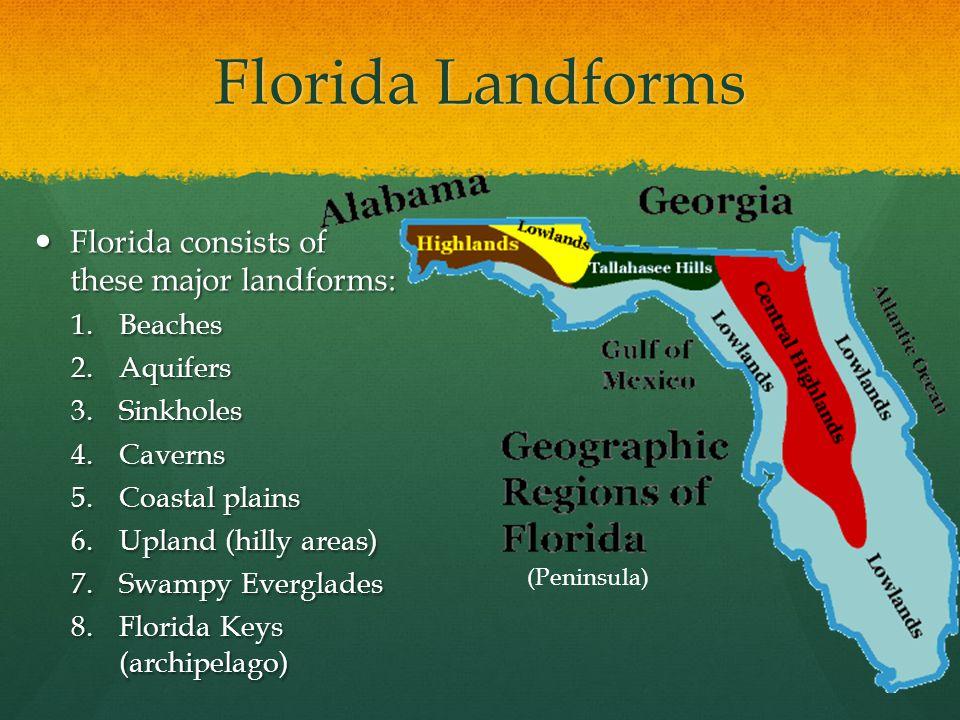 Florida Landforms Florida consists of these major landforms: Beaches