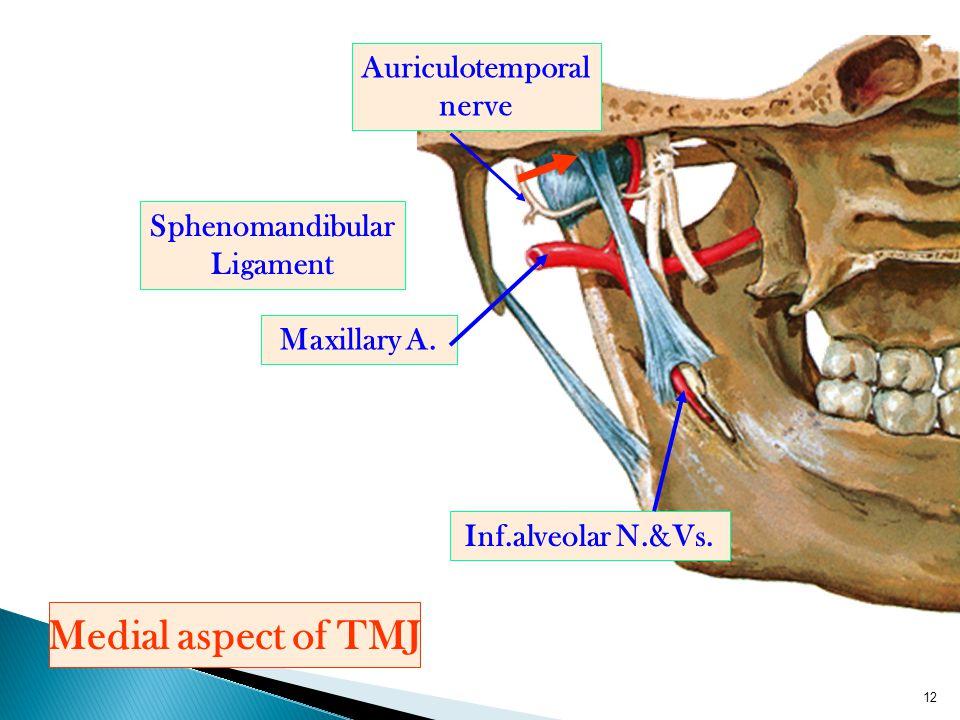 Auriculotemporal nerve Sphenomandibular Ligament