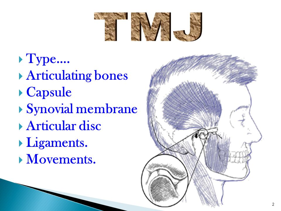 TMJ Type…. Articulating bones Capsule Synovial membrane Articular disc Ligaments. Movements.