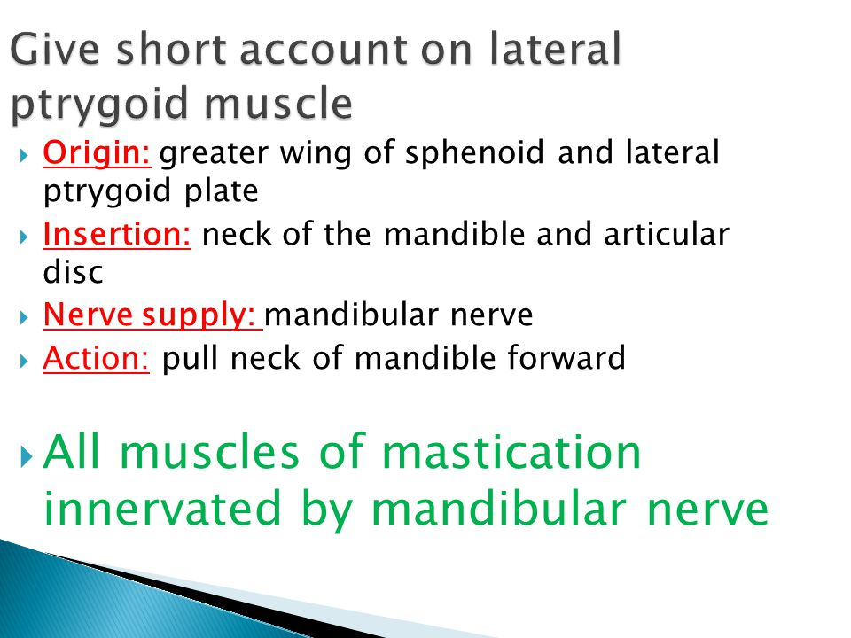 Give short account on lateral ptrygoid muscle