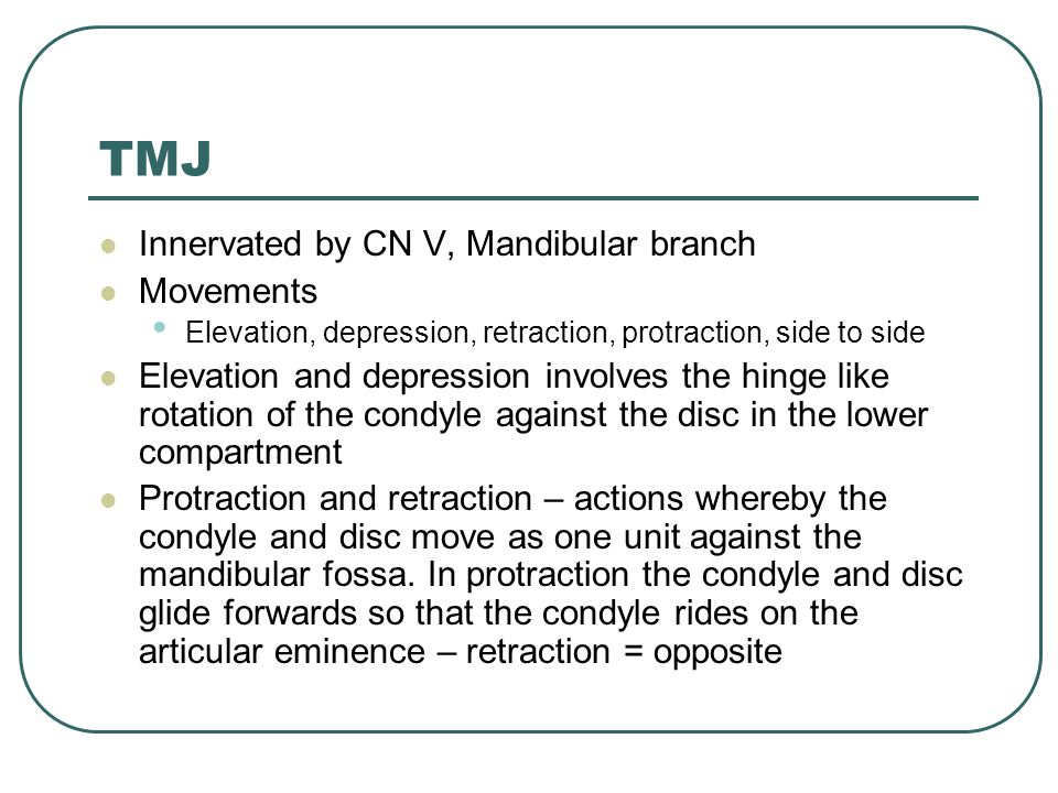 TMJ Innervated by CN V, Mandibular branch Movements