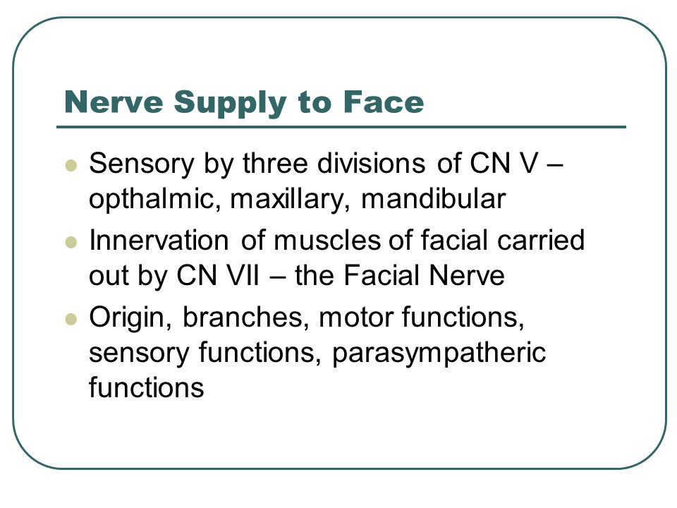 Nerve Supply to Face Sensory by three divisions of CN V – opthalmic, maxillary, mandibular.