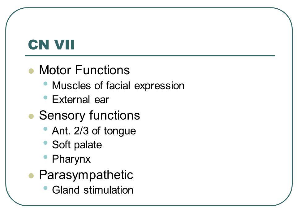 CN VII Motor Functions Sensory functions Parasympathetic