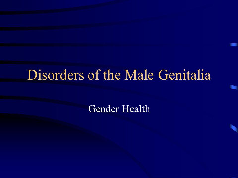Disorders of the Male Genitalia