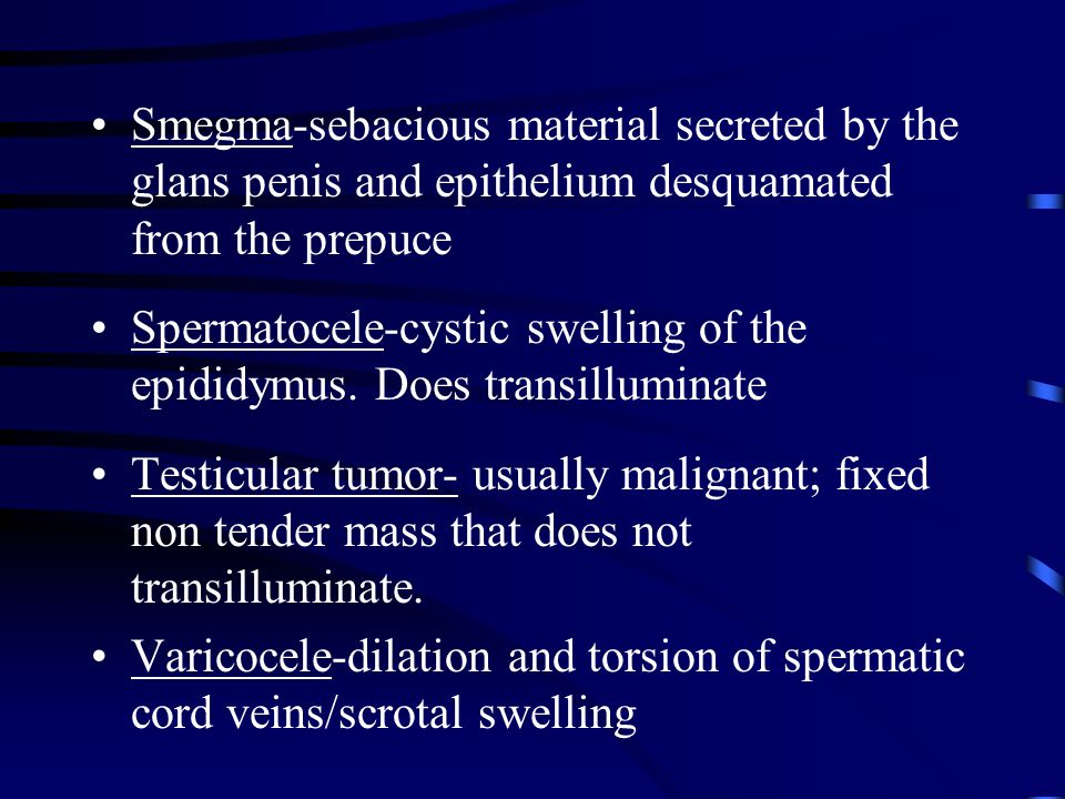 Smegma-sebacious material secreted by the glans penis and epithelium desquamated from the prepuce