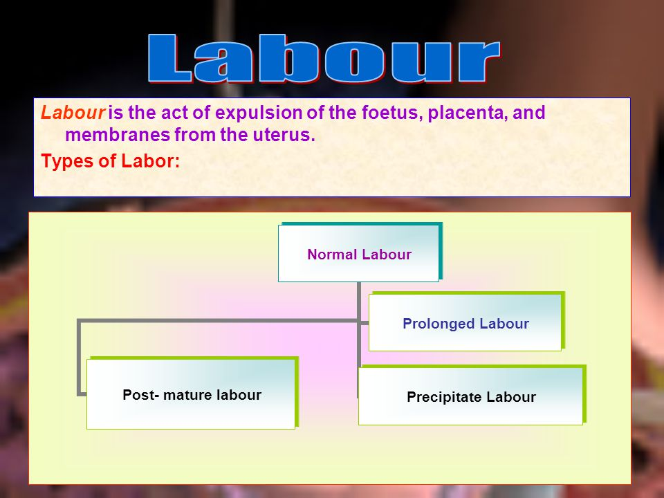 Labour Labour is the act of expulsion of the foetus, placenta, and membranes from the uterus.