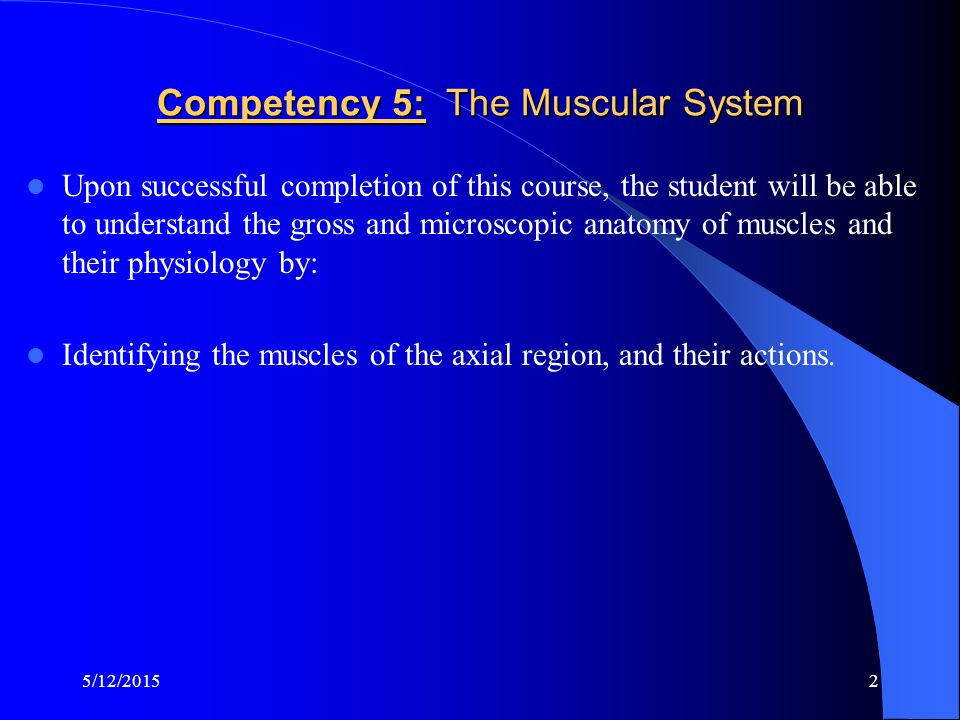 Competency 5: The Muscular System
