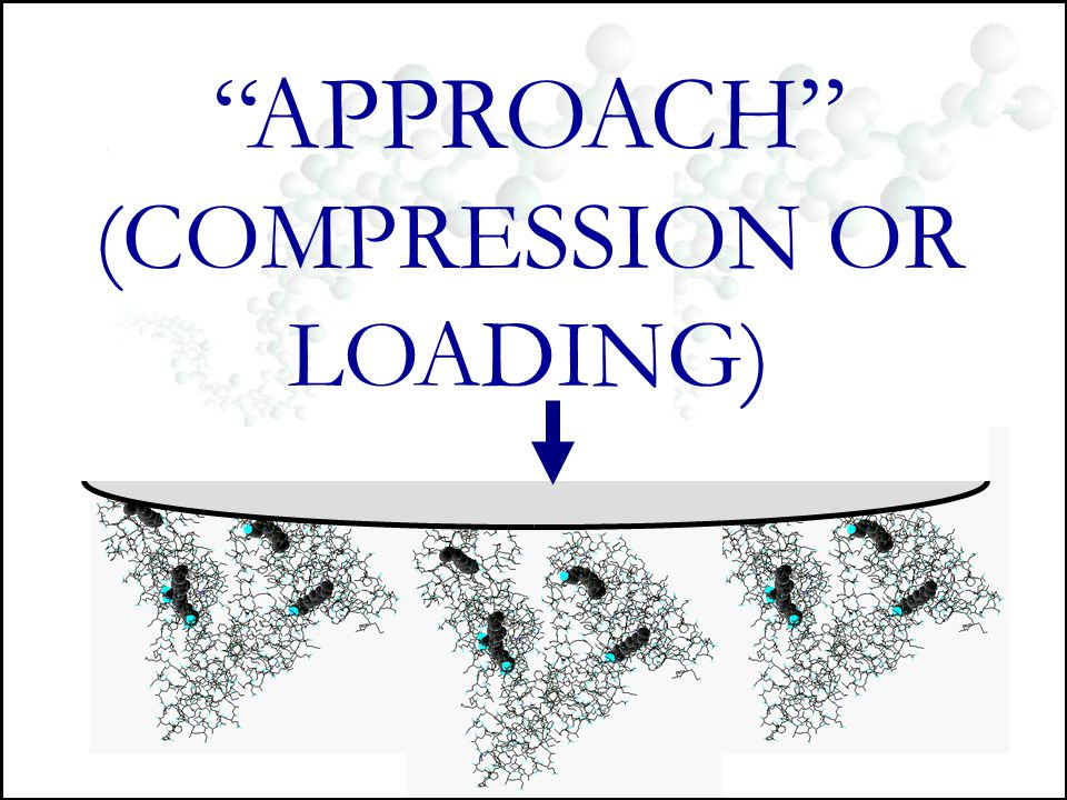 (COMPRESSION OR LOADING)