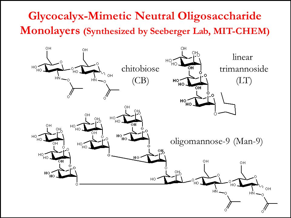 Glycocalyx-Mimetic Neutral Oligosaccharide Monolayers (Synthesized by Seeberger Lab, MIT-CHEM)