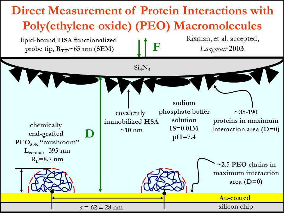 Direct Measurement of Protein Interactions with Poly(ethylene oxide) (PEO) Macromolecules