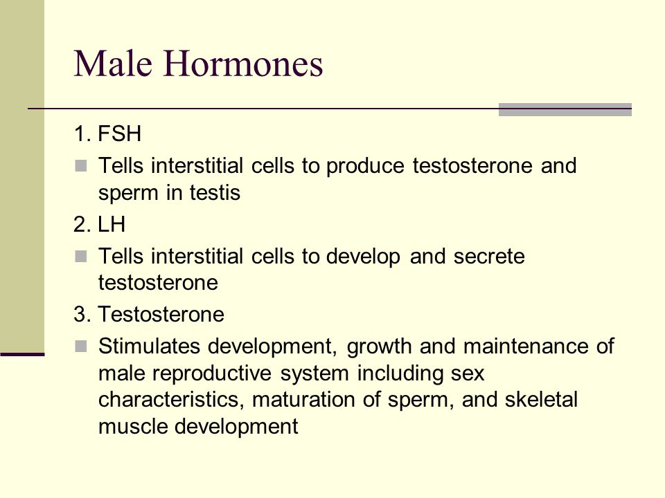 Male Hormones 1. FSH. Tells interstitial cells to produce testosterone and sperm in testis. 2. LH.