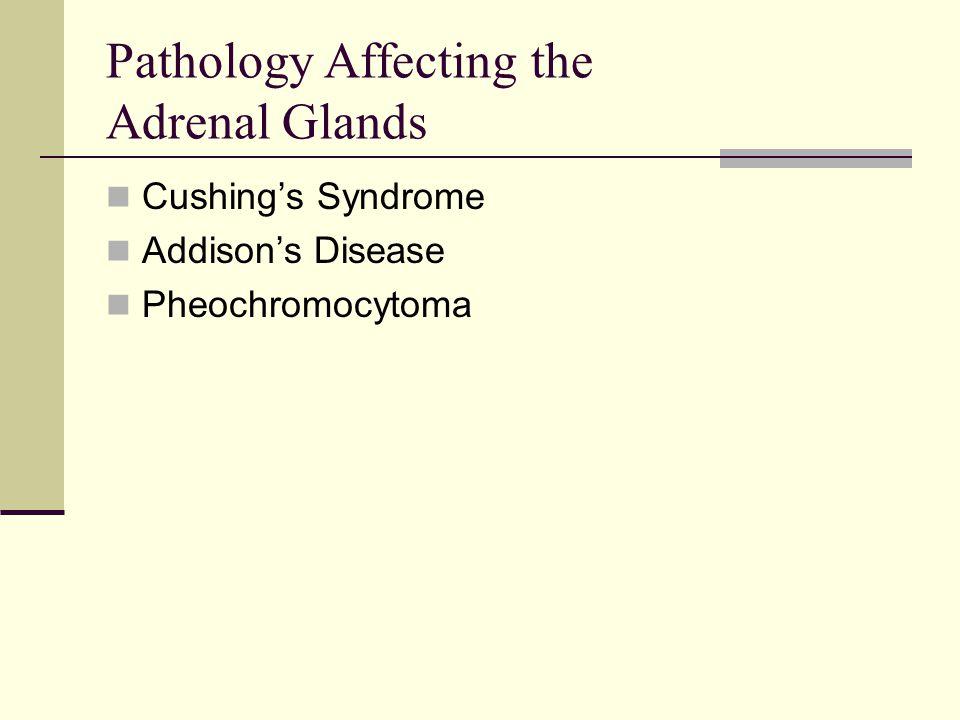 Pathology Affecting the Adrenal Glands