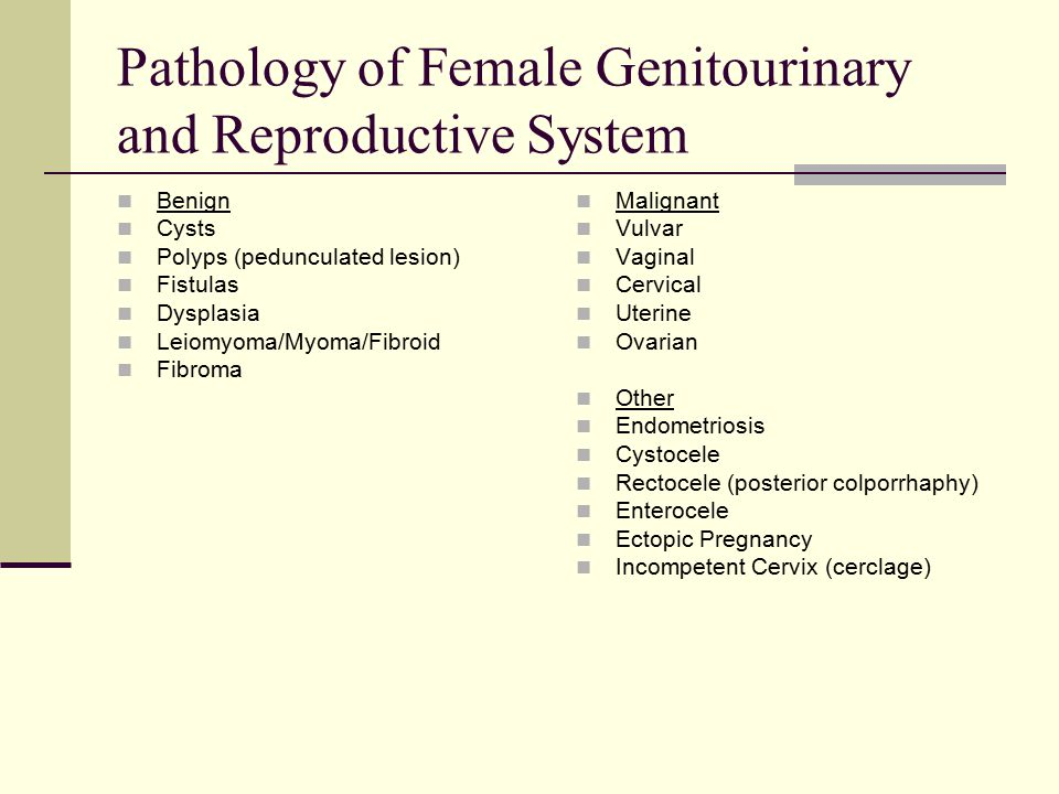 Pathology of Female Genitourinary and Reproductive System