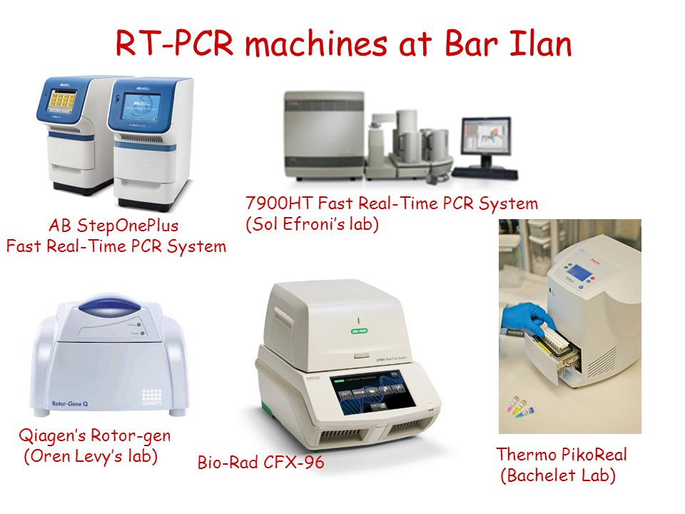 RT-PCR machines at Bar Ilan