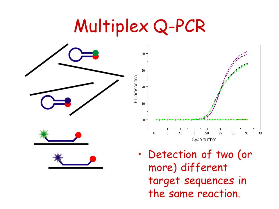 Multiplex Q-PCR Detection of two (or more) different target sequences in the same reaction.