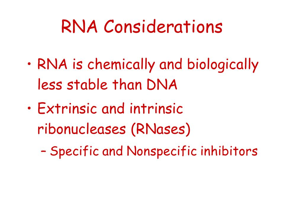 RNA Considerations RNA is chemically and biologically less stable than DNA. Extrinsic and intrinsic ribonucleases (RNases)
