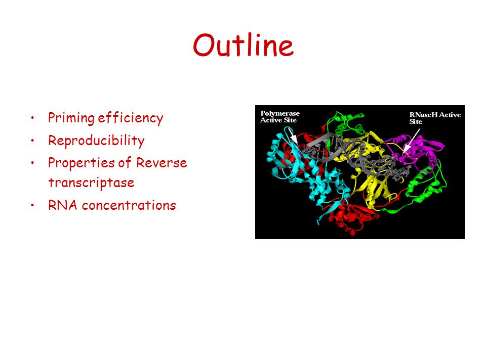 Outline Priming efficiency Reproducibility