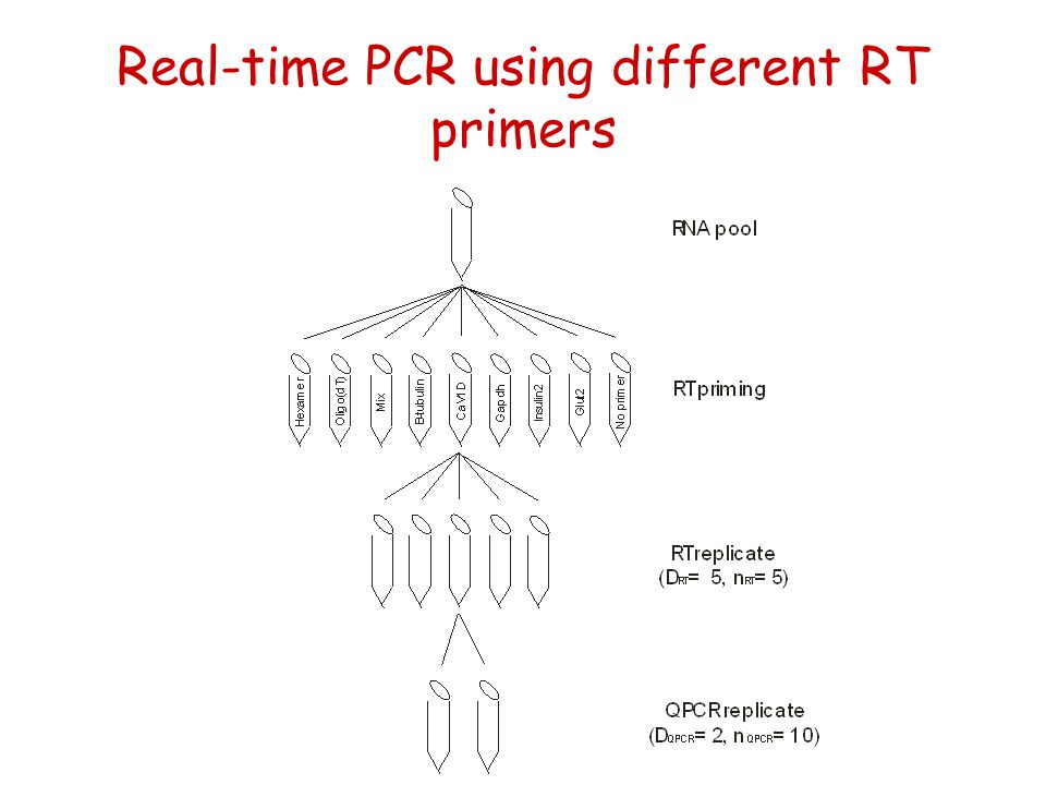 Real-time PCR using different RT primers