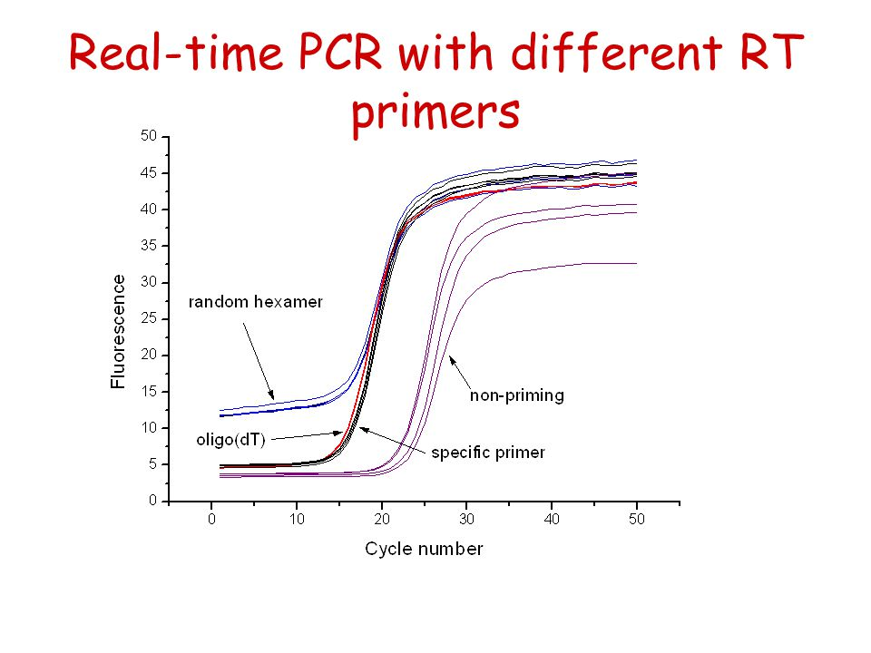 Real-time PCR with different RT primers