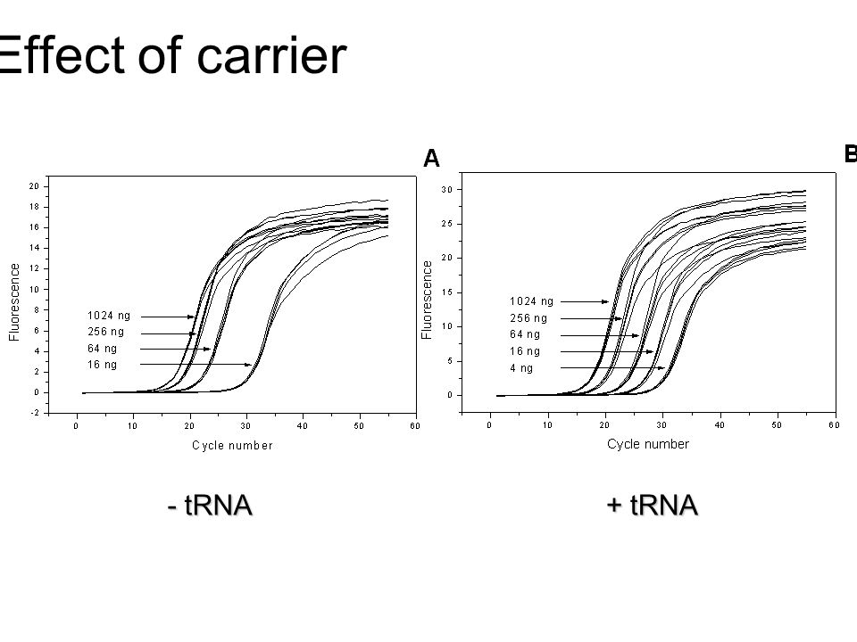Effect of carrier - tRNA + tRNA