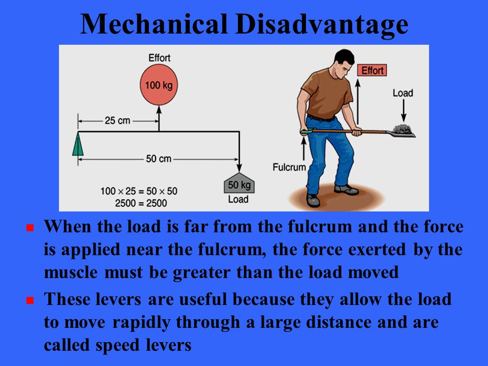 Mechanical Disadvantage