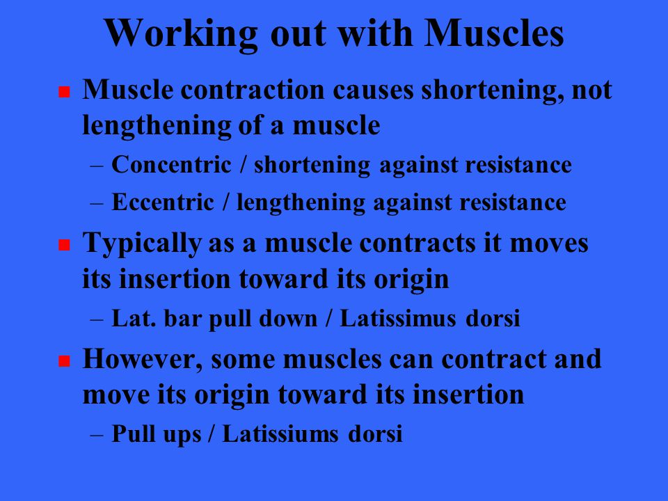 Working out with Muscles