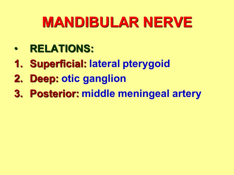 MANDIBULAR NERVE RELATIONS: Superficial: lateral pterygoid